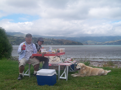 Akaroa Day tour picnic lunch.