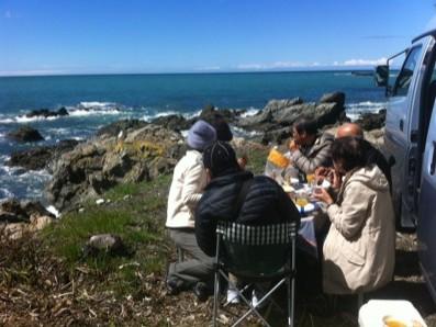Picnic Lunch on the Kaikoura Coast
