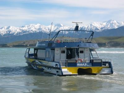 Kaikoura Whalewatch Boat