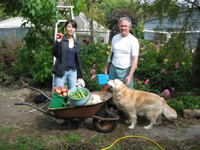 Christchurch Garden Tour harvesting.