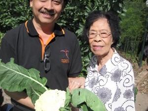 Christchurch Garden Tour harvesting
