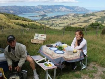 Picnic lunch above Akaroa Harbour on Akaroa Day Tour